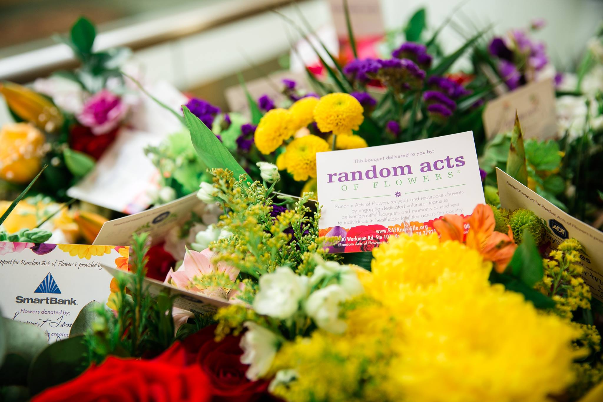 Flower arrangements with Random Acts of Flowers delivery cards